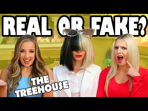Real or Fake and who's in the Hot Seat? The Treehouse Show from Totally TV