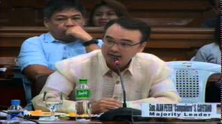 Blue Ribbon Committee Hearing (August 26, 2014)