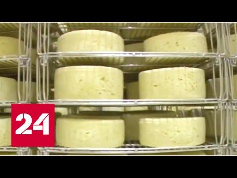 видео: Сыр-бор. Специальный репортаж Артема Кола