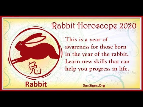 RABBIT LUCK IN THE YEAR OF THE METAL RAT 2020 CHINESE ZODIAC AND FENG SHUI FORECAST