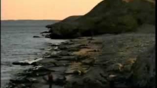タイムスリップ! 恐竜時代 古代の海へ ①-1