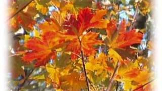 Осенняя песня Анна Герман  Jesienna pieśń Anna German