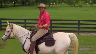 Leading From Horseback Intro