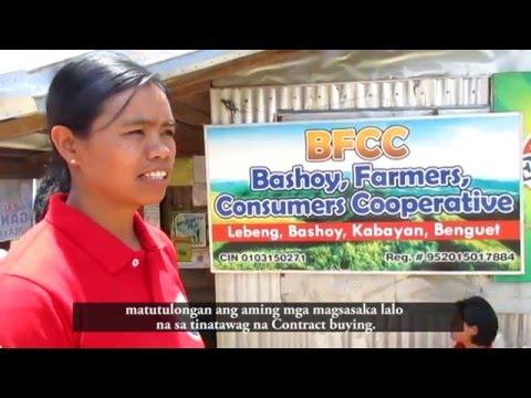 Bashoy Farmers Consumers Cooperative