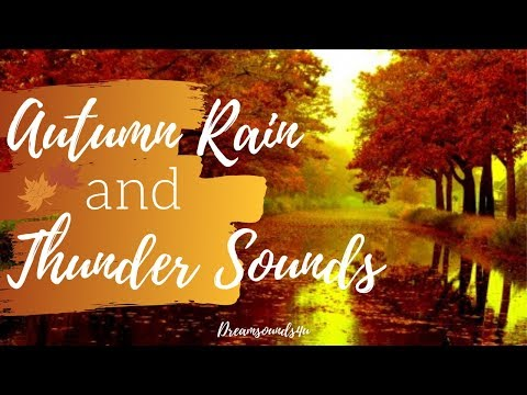 AUTUMN RAIN And THUNDER AMBIENCE | 2 HOURS