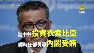 美國務院再挺台!參議員:新WHO領導人需接受台灣