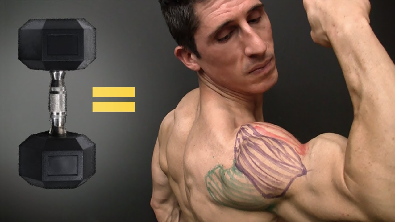 The Best Dumbbell Exercises Shoulders Edition Youtube