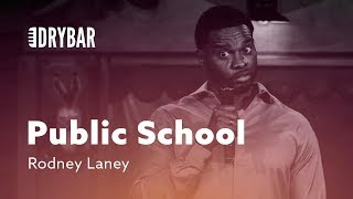 Public School Problems. Rodney Laney thumbnail