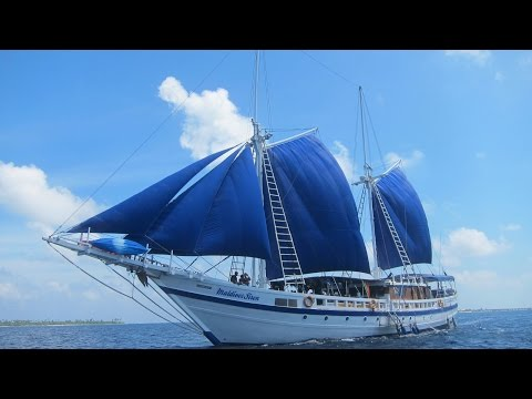 Maldives Pictures Show - scuba diving in the Indian Ocean