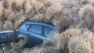 huge-tumbleweeds-bury-cars-and-close-motorway