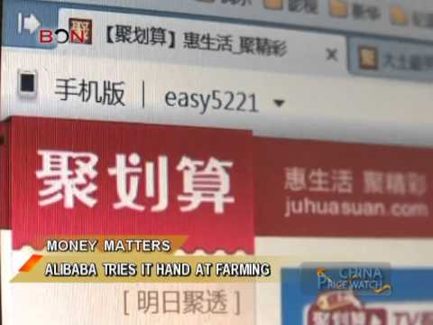 Alibaba tries it hand at farming - China Price Watch - May 28, 2014 - BONTV China