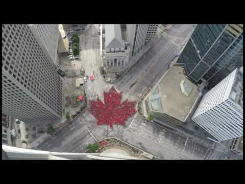 Largest Living Maple Leaf Created in Winnipeg