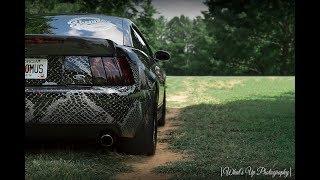 Derek's 700WHP Terminator Mustang Cobra
