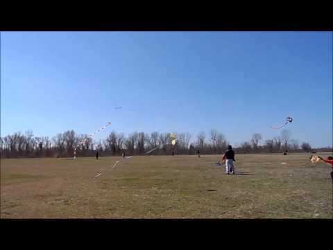 Missouri City, Texas Kite Fest  3-2-2013 Boeing P-26 Peashooter Kite