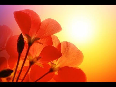 """Peaceful Music, Relaxing Music, Instrumental Music """"Reflections of Light"""" by Tim Janis"""