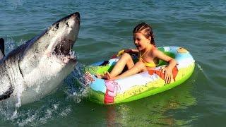 ОСТОРОЖНО в Азовском море появились акулы Нападение акулы(Мы сняли свой первый триллер! Приятного просмотра Пишите комментарии и не судите строго., 2016-09-05T09:21:42.000Z)