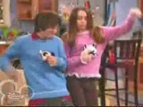 Hannah Montana Cat And Dog Sweater