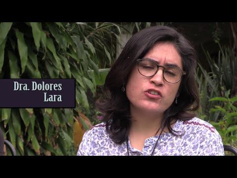 Mujeres matemáticas en Latinoamérica