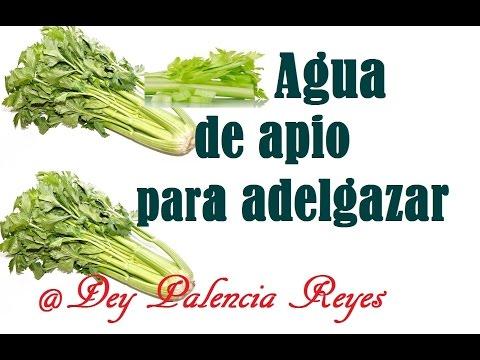 Agua de apio para adelgazar - Te de apio para adelgazar -  Dey Palencia Reyes