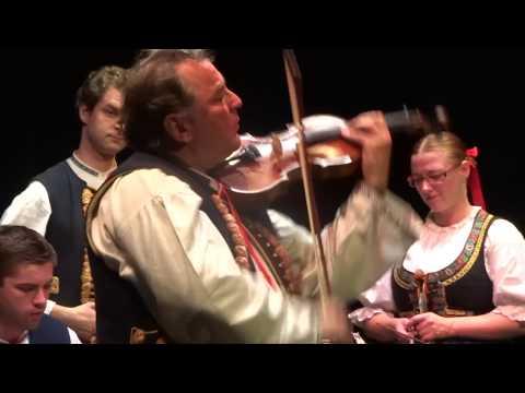 Groupe de VALASKY VOYVODA d'Ostrava , musique Tchèque