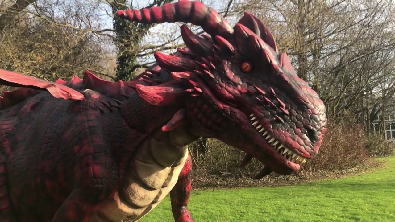 2028ec4b0 Big Foot Events - Hire a Dragon | Dreygo The Dragon | UK's Largest  Animatronic Dragon