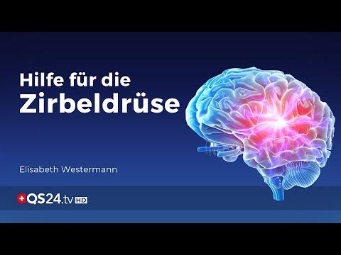 Hilfe für die Zirbeldrüse   Sinn des Lebens   QS24 Gesundheitsfernsehen