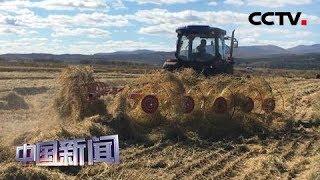 [中国新闻] 新版《土地管理法》聚焦三大关切 | CCTV中文国际