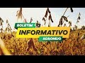 Colheita de soja em Mato Grosso está quase no fim