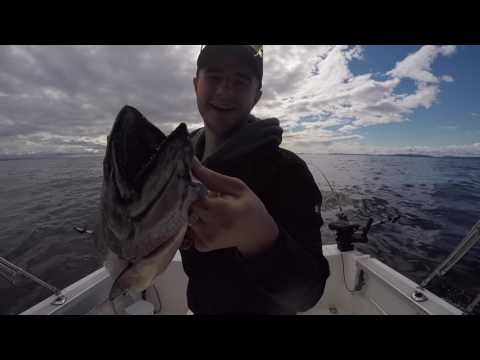 Salmon fishing in Vancouver with Bonnie Lee Charters