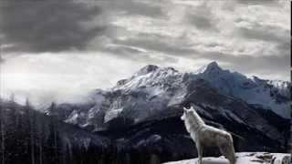 Idaaliur - ...and The Mountains Echoed (Intrumental Trailer)