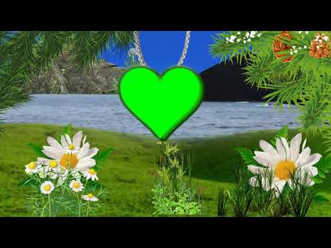 Wedding Farem Video green screen effect #23 thumbnail