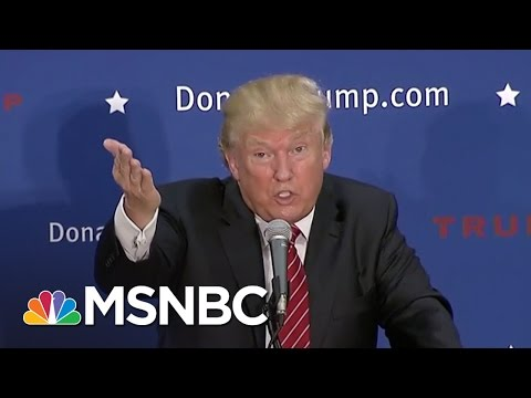 Donald Trump: If I Win, Syrian Refugees 'Are Going Back' | MSNBC