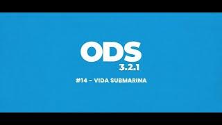 ODS en 3, 2, 1: 14 Vida submarina