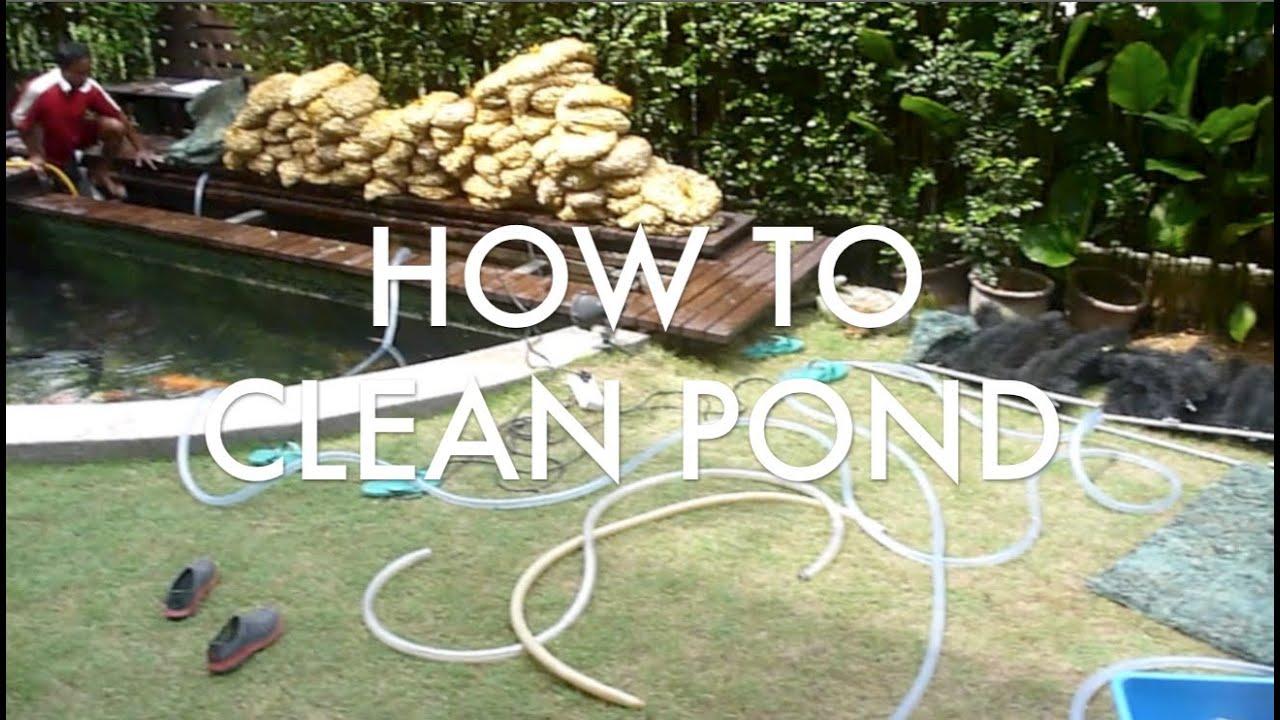 tl u0027s how to clean 13 000 gal pond u0026 tank youtube