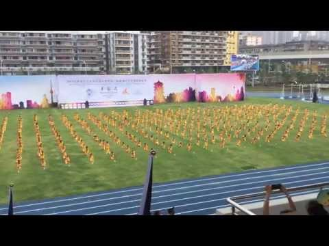 ISF Athletics Wuhan 2015 Opening Ceremony - cerimónia abertura - Portugal