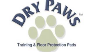 Midwest Dry Paws Training And Floor Protection Pads  50-count