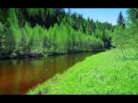 Река-Омра: ) Oleg Mikhailov