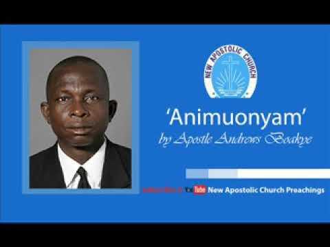 Animuonyam (Glory ) by Apostle Boakye Andrews