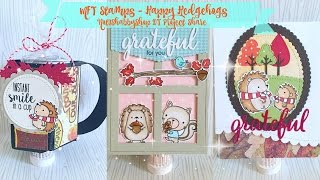 MFT Stamps Happy Hedgehogs ~ Not2Shabby DT Project Share(, 2016-10-01T11:33:05.000Z)
