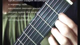 Видеошкола. Уроки игры на гитаре для начинающих. (2 из 7)(Дистанционное обучение с нуля: http://stepschool.ru Импровизация, аккомпанемент, красивые мелодии. Научиться может..., 2009-09-09T14:18:09.000Z)