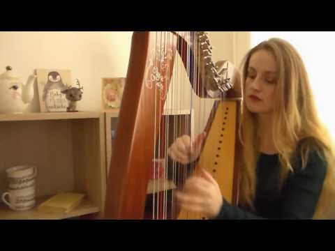 Taylor Swift - All You Had To Do Was Stay (Harp Cover)