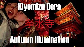 Kyoto, Japan Travel | Kiyomizu Dera Temple Autumn Illumination 清水寺 | Momiji 紅葉 Kōyō 紅葉