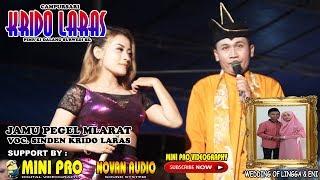 Jamu Pegel Mlarat CAMPURSARI KRIDO LARAS - MINI PRO.mp3