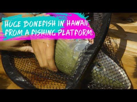 CATCHING A Giant BONEFISH From Fishing PLATFORM In HAWAII