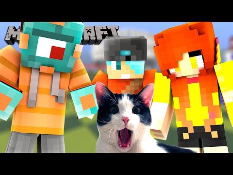 CHAD'S CAT JOINS OUR BED WARS VIDEO! | Bed Wars w/ Gamer Chad & Dollastic! | MicroGuardian