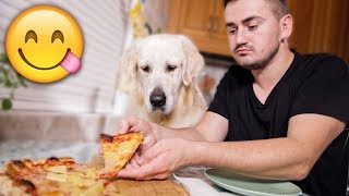 Eating PIZZA with My Dog  Dinner with a Golden Retriever!