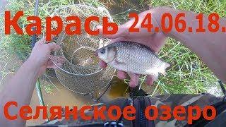Ловля карася, Селянское озеро, Солотча, Рязанская область