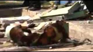 Repeat youtube video 29 niños muertos en incendio en Guarderia ABC de HERMOSILLO
