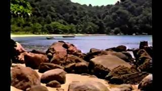 Tom Jobim - Visão do Paraíso - Parte 2