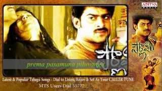 Pournami Songs With Lyrics - Bharata Vedamuga Song - Prabhas, Trisha, Charmi